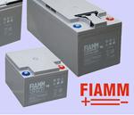 batteria_FIAMM_fotovoltaico_42AH.jpg